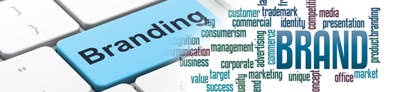 Branding agency Long Island NY
