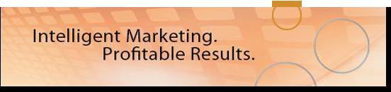 Intelligent Marketing